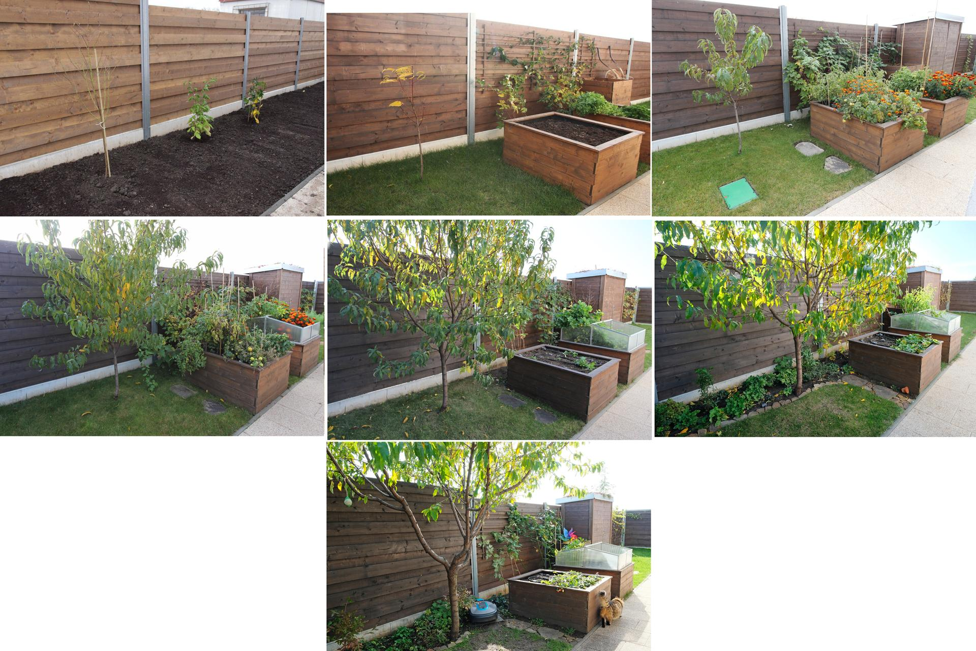 Naša záhradka 2020 - Rijen 2014 - rijen 2020
