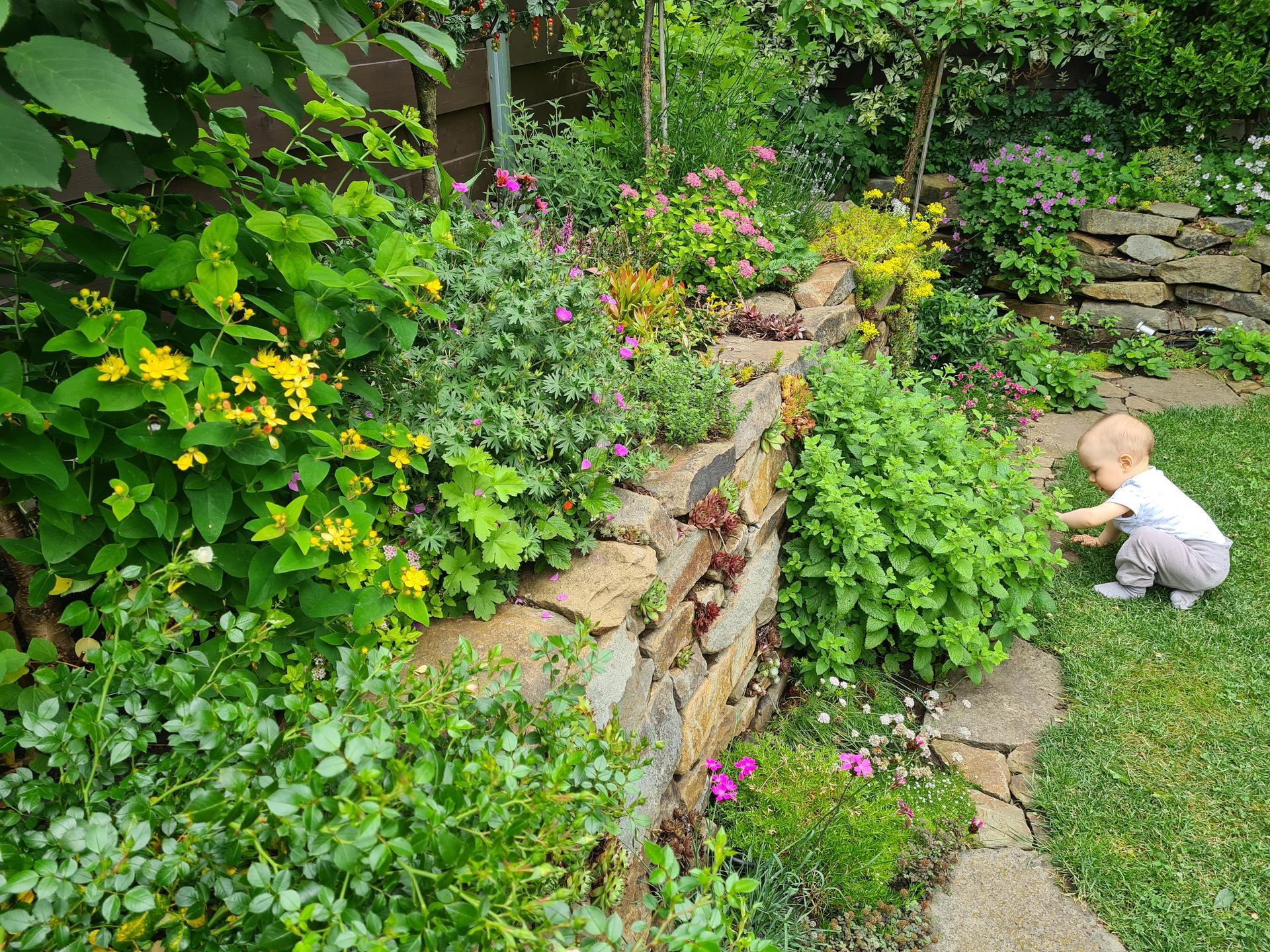 Naša záhradka 2021 - Moj maly zahradny pomocnik