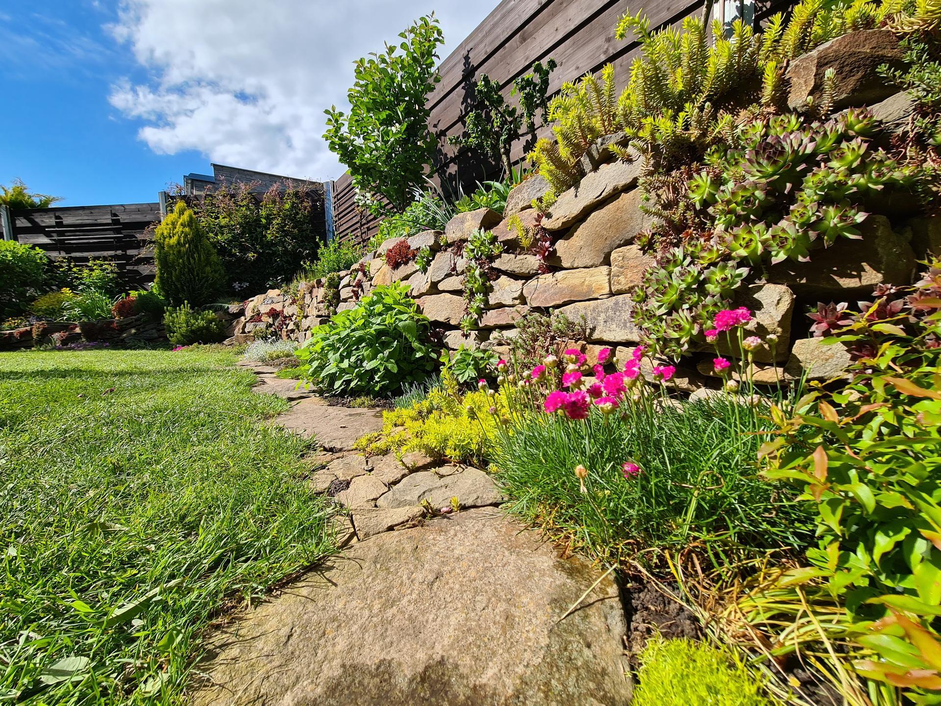 Naša záhradka 2021