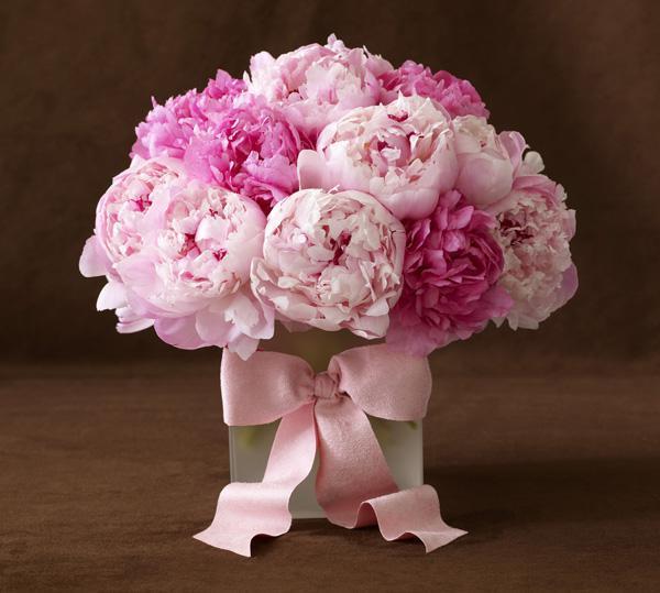 Moje ružové predstavy :) - Možno na stoly :) ešte uvidíme :)