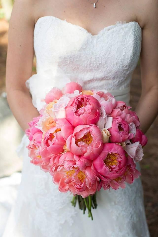 Moje ružové predstavy :) - ;)