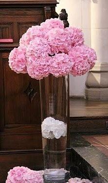 Moje ružové predstavy :) - Zaujímavé :)