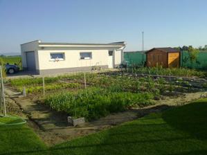Niet nad zeleninu z vlastnej zahrady.... papa Tesco