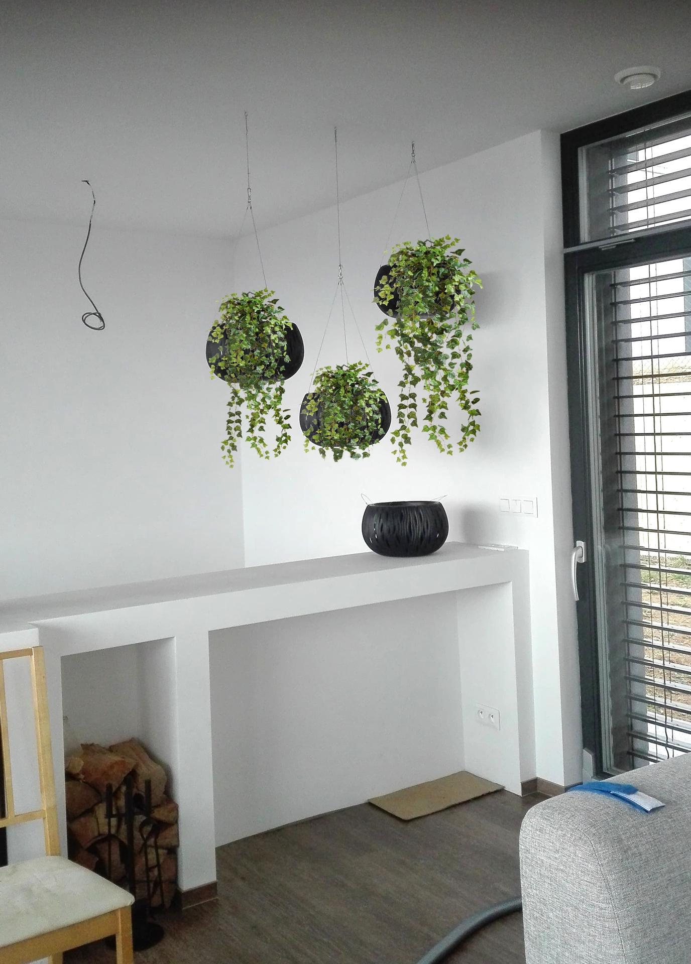 Máte někdo prosím zkušenost s nákupem pokojových rostlin na eshopu? Ráda bych osadila závěsné květináče, ale v zahradnictvích fungují převážně jen venkovní prostory. Děkuji - Obrázek č. 1