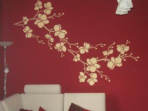 ...a moja orchidejka