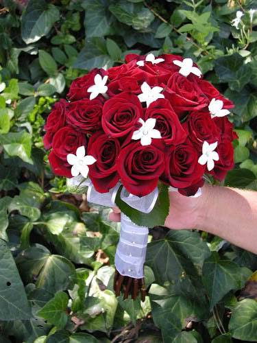 Rose wedding - Obrázok č. 21