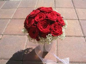 růže-červené