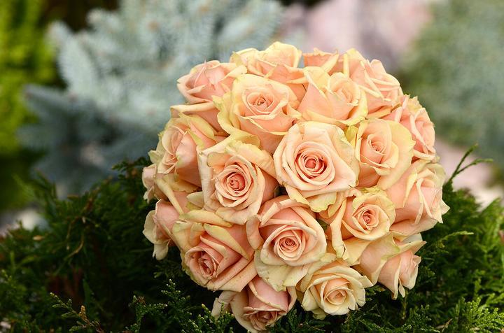Svadobné kytice, možnosť aj kúpiť - Obrázok č. 17