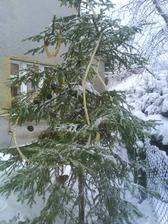 řetěz na stromku.jpg
