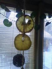 citrony a jablíčka v kuchyni