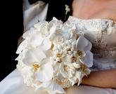 ...a bílá orchidej jako bombónek na dortu...:-)