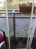 sietky na okna,