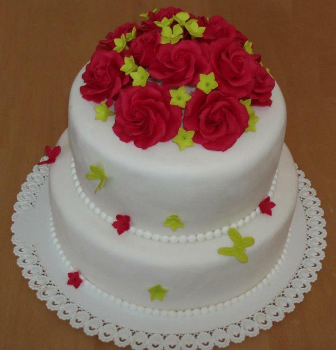 Majka{{_AND_}}Janko - naša svadobná ... ruže sú cyklaménové ...