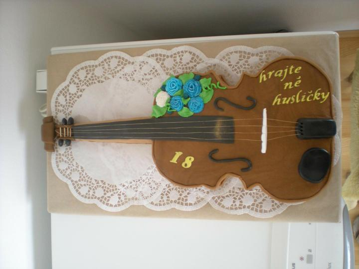 Moje výtvory - housle