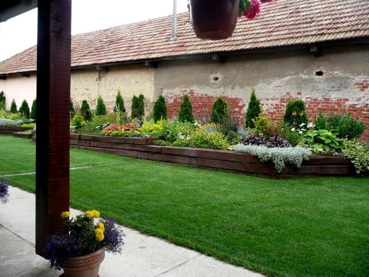Naša debutová záhradka - Obrázok č. 36