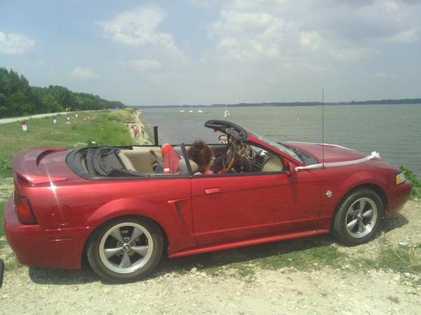 :-) Ford- Mustang-GT-Cabriolet ;-)... - Obrázok č. 1