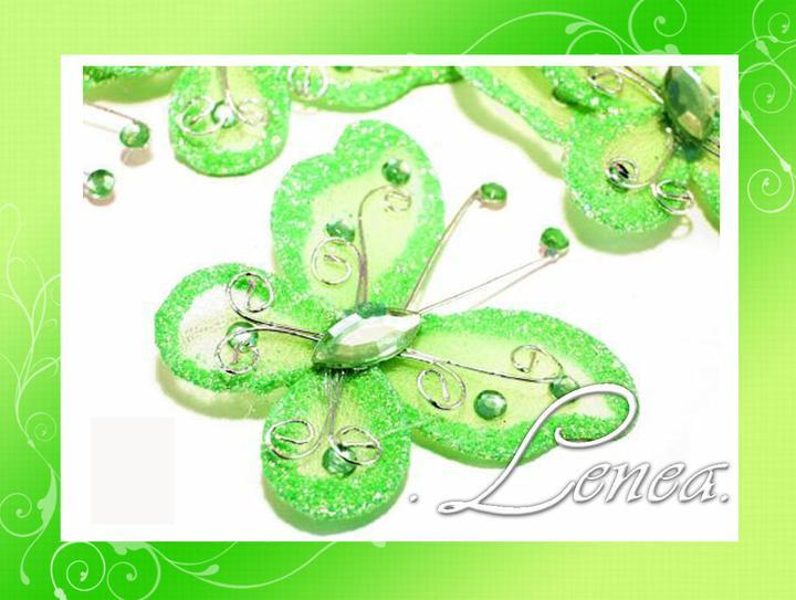 Motýlci - Obrázek č. 4