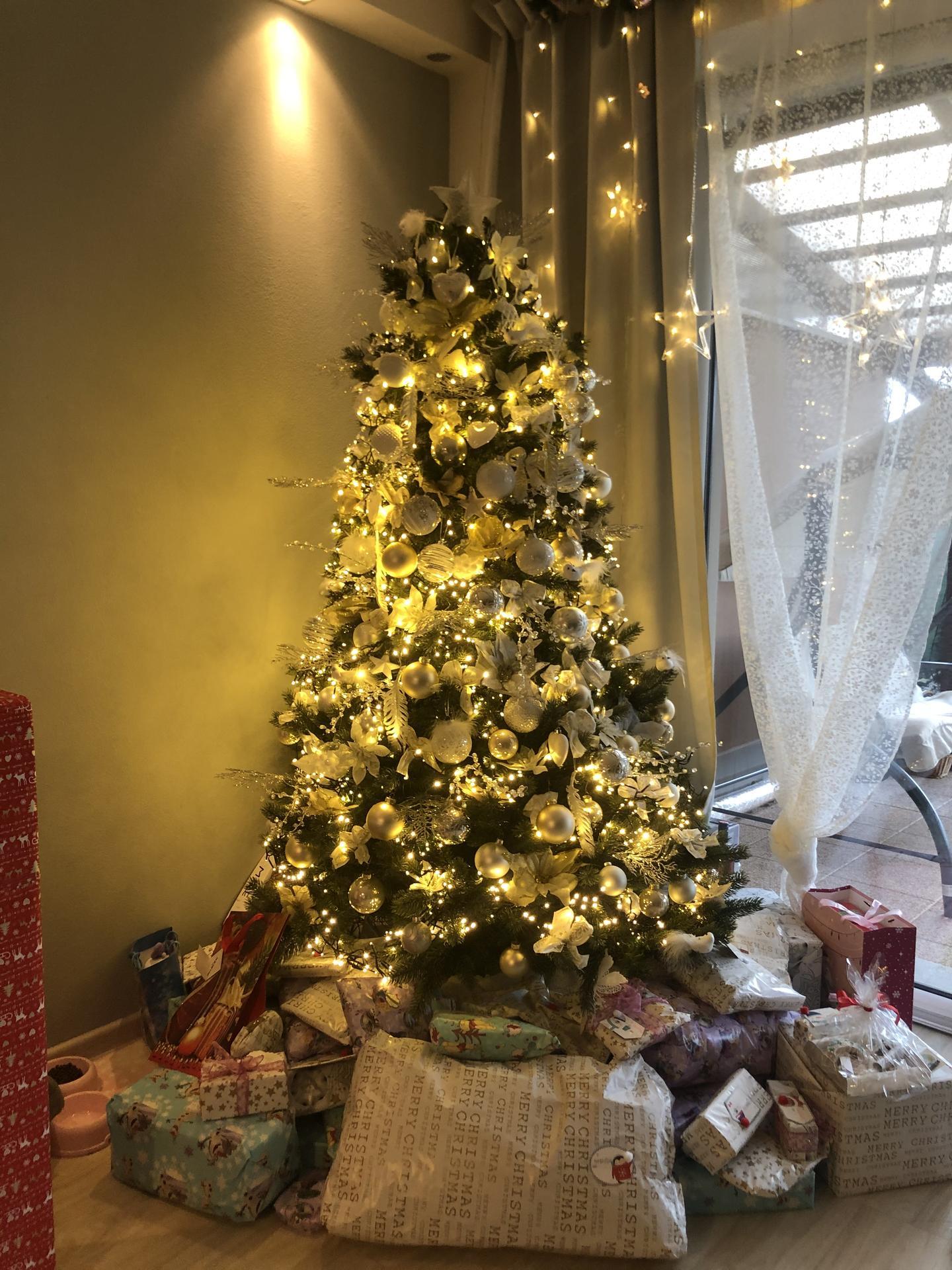Příjemné prožití vánočních svátku a v roce 2020 pevné zdraví,štěstí,lásku a řadu správných rozhodnuti na cestě ke splněným snům. - Obrázek č. 4