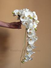 ...orchideje nebo úplně jiné?!