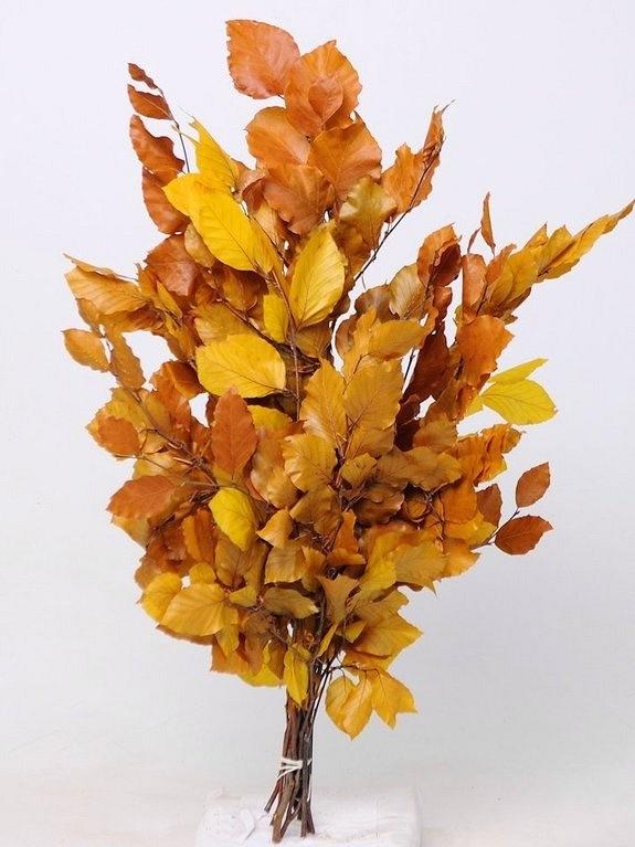 NOVÉ  stabilizované bukové konáre s listami v jesenných farbách , vtáčiky z pierok , černice , šípky a ďalšie jesenné dekorácie nájdete v našej ponuke e-shopu - Obrázok č. 3