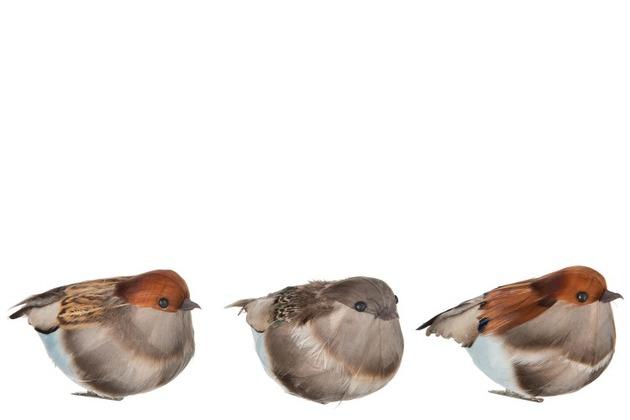NOVÉ  stabilizované bukové konáre s listami v jesenných farbách , vtáčiky z pierok , černice , šípky a ďalšie jesenné dekorácie nájdete v našej ponuke e-shopu - Obrázok č. 9