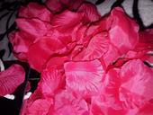 Cyklamenove lupene,
