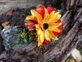 čelenka se žlutým květem,