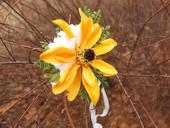 sluneční květ,