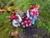 barevné bobulky podzimu,