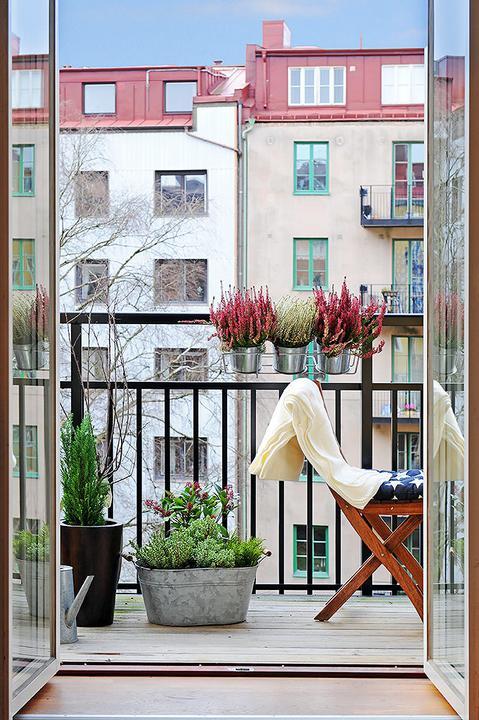 MišMaš.. inspirace všehochuť - dalo by se tohle udělat na panelákovém balkóně? hm....