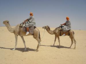 vyjížďka na velbloudech na Sahaře