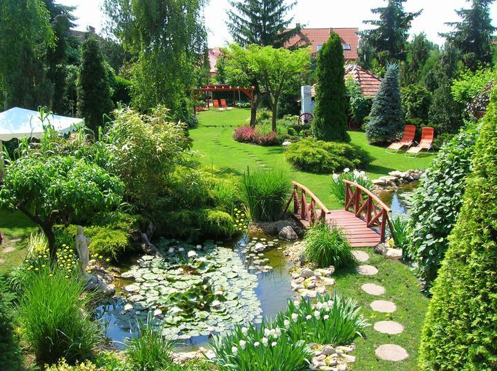 Voda v záhrade - Obrázok č. 202