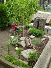 Zahrada 2010