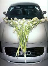 Ovšem na auto jedině tohle buď kalách nebo pro mě radši v růžích!