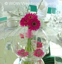 Were having to of these on the top table with Maroon coloured flowers