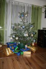 náš letošní modro-bílo-dřevěný...