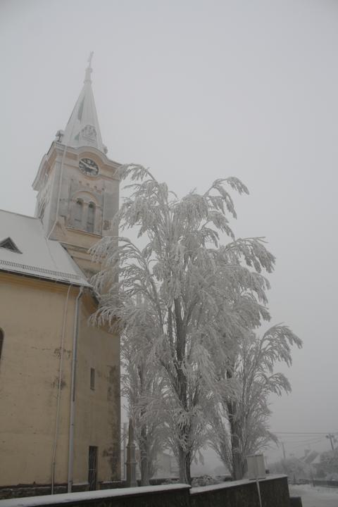 Paní Zima 2013 - Obrázek č. 2