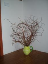 Sousedé likvidovali okrasnou vrbu... :-)