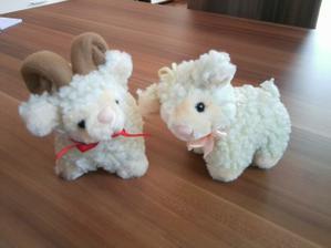 Dostali jsme nové ovečky :-D