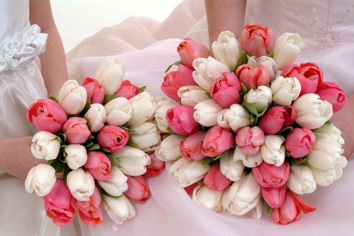 Budeme manželia :) - Krásna, pre jarnú nevestu :)