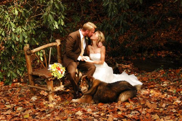 Jesenná svadba 🍁 - Hawa nemáme, ale keby sme mali isto by tam bol s nami :-) A možno dovtedy mať budeme?