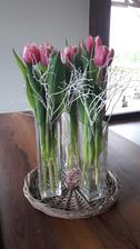 Milujem tulipány ❤️