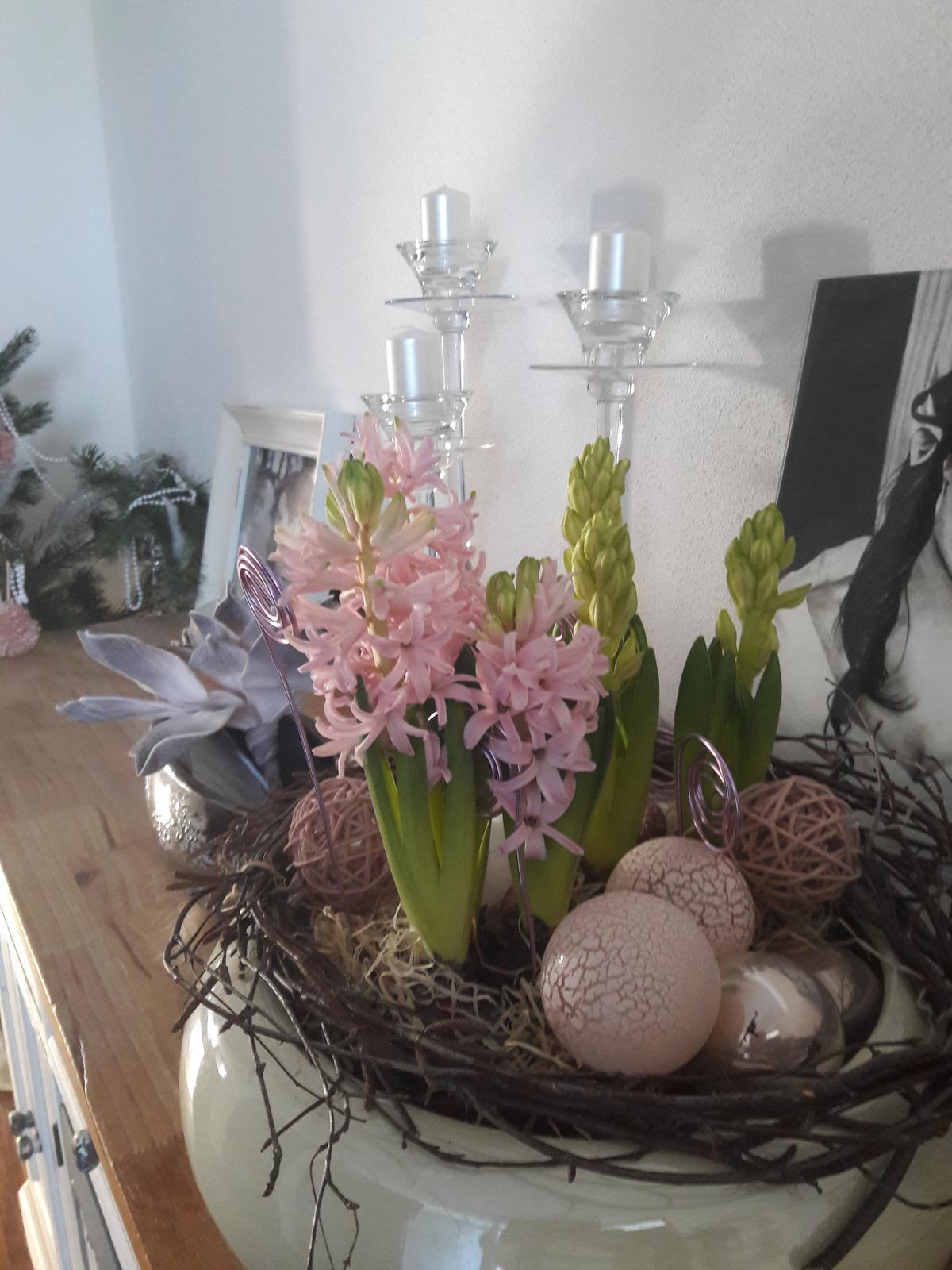 Náš domov :) - Po týždni už kvitnú 🌸