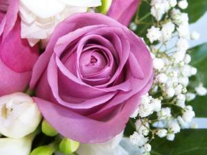 Tak tohle je růže, kterou možná budu mít v kytici. Chtěla jsem fialové, ale nejdou sehnat. Tahle je něco blízko..no, uvidím