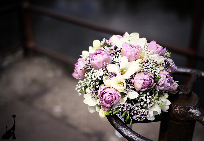 Kvety, kvety, kvety - Obrázok č. 10