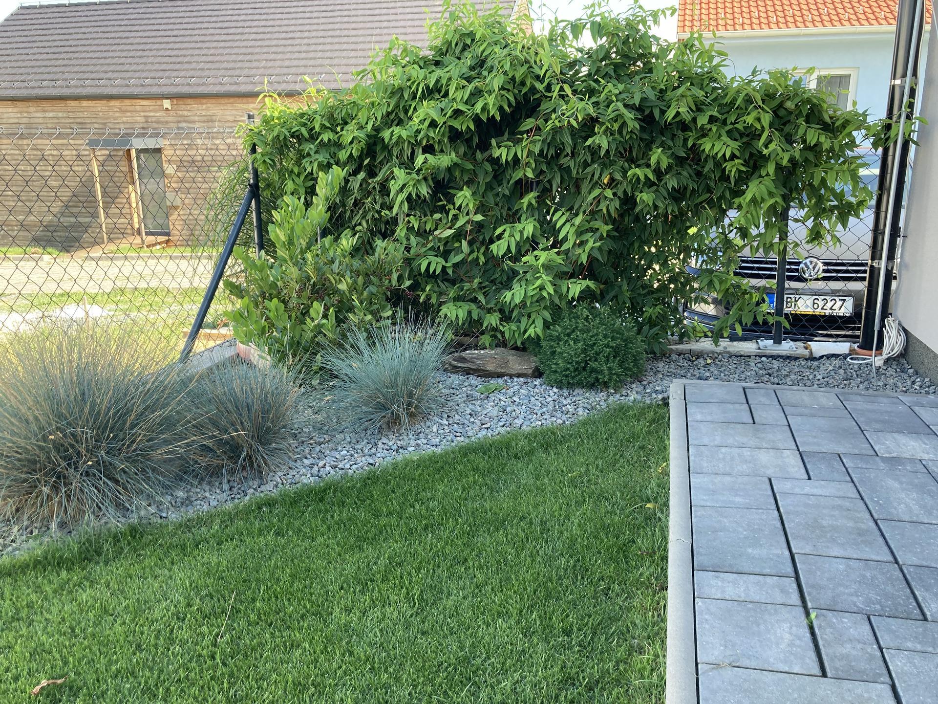 Naše 3 roky stará zahrada 🤩 - Obrázek č. 12