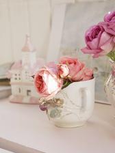 Posledné ružičky z mojej záhrady :)
