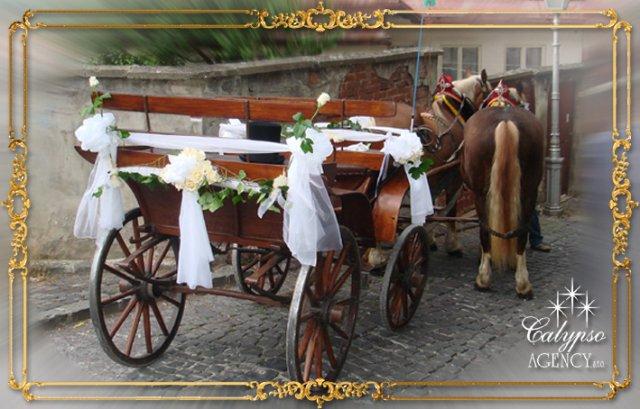 Keby som sa mohla odviazať, moja svadba snov by vyzerala takto... - Na obrad by nás doviezol takýto koč...