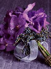 Fialkové orchideje jsem ještě neviděla:)