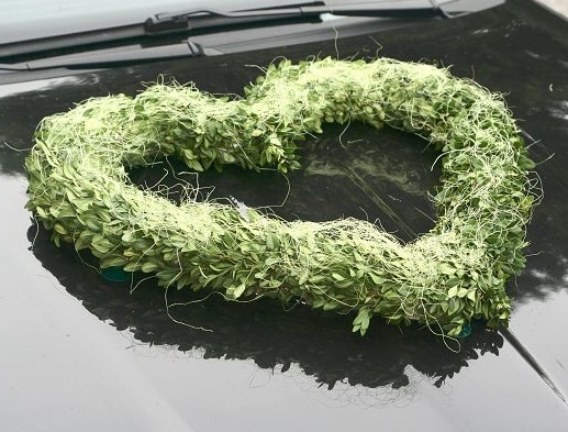 Zelená svatba - Obrázek č. 62